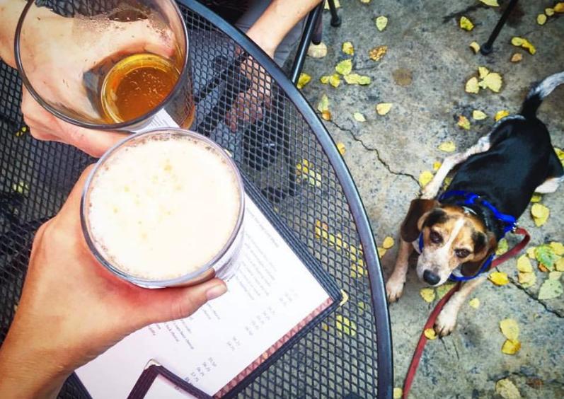 dog friendly patio